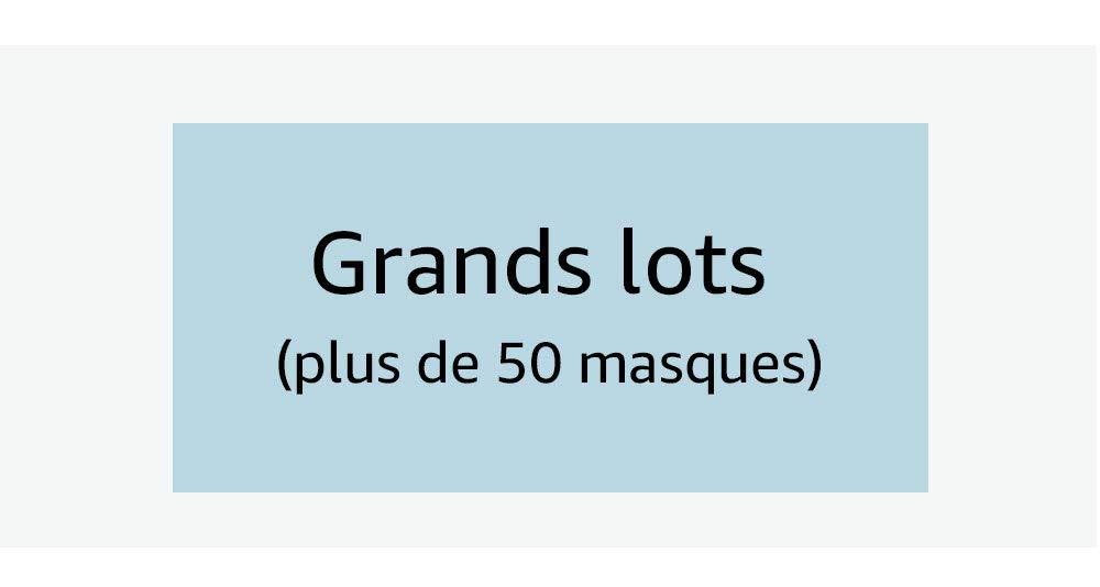 Grands lots (plus de 50 masques)