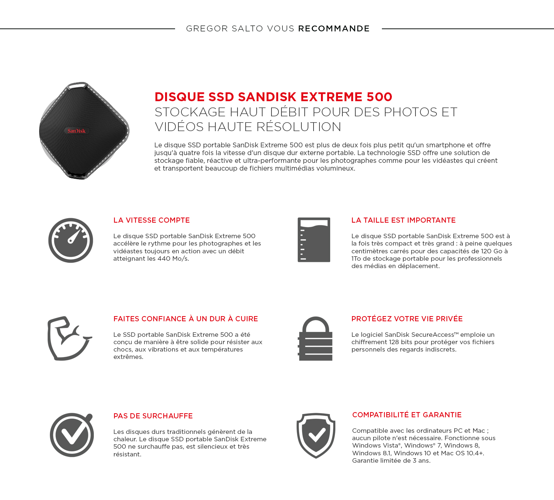 SSD 500