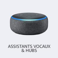 Assistants Vocaux & Hubs