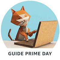 Guide Prime Day
