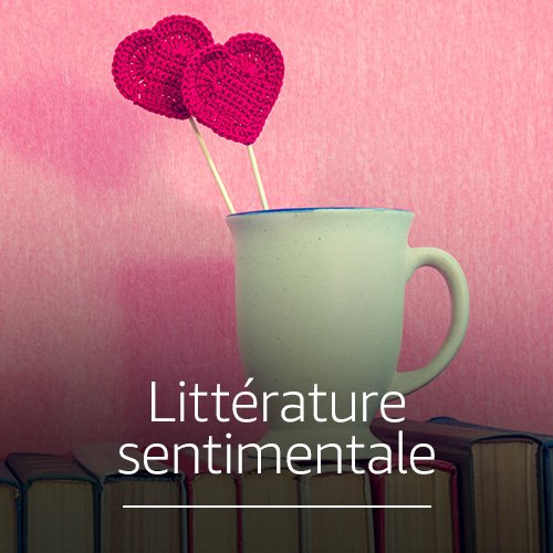 Littérature sentimentale