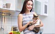 Sans céréales : chats