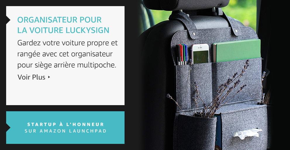Organisateur pour la voiture Luckysign