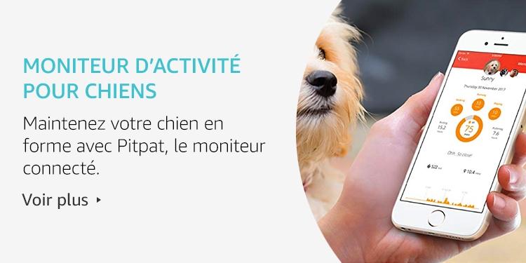 Moniteur d'activité pour chiens