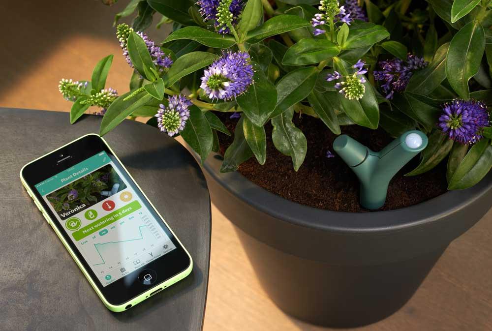Parrot Flower Power Vert Capteur Sans Fil Amazon Fr