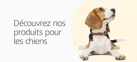 Découvrez notre boutique dédiée aux chiens