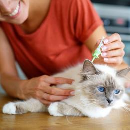 Tous nos produits pour des animaux en bonne santé