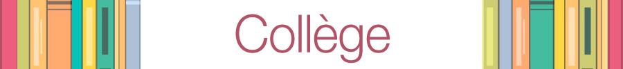 Collège : manuel et livre scolaire, soutien scolaire...