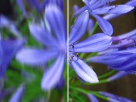 Le stabilisateur d'image minimisant le flou de bougé et garantissant des photos et des vidéos nettes et détaillées