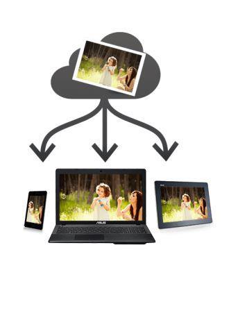 Expression Premium XP510