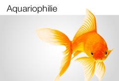 Aquariophilie et Bassins d'agrément
