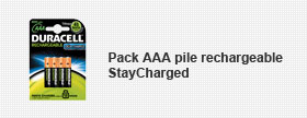 Pack AAA pile rechargeable StayCharged