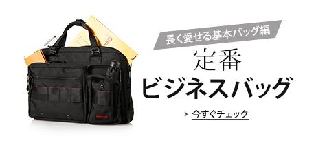 Basic Business Bag