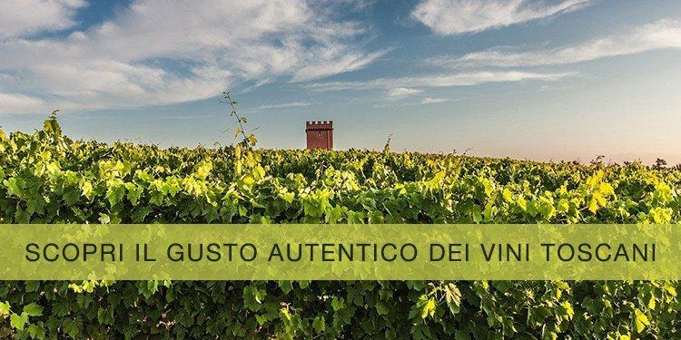 Scopri il gusto autentico dei vini toscani