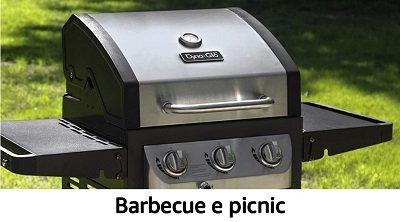 Barbecue e picnic