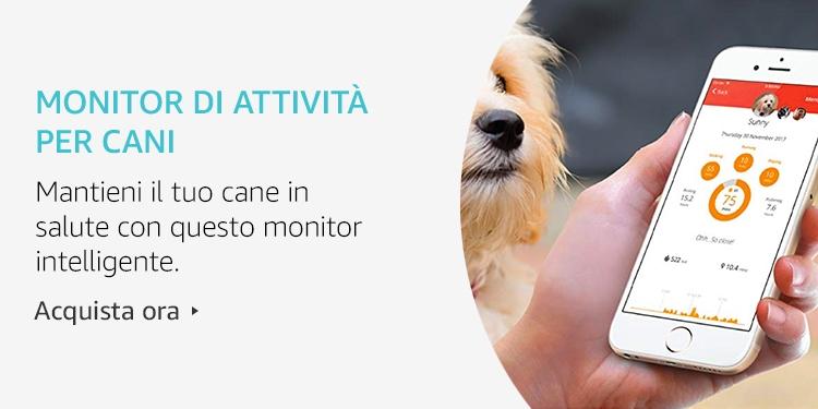 Amazon Launchpad: Monitor di attività per cani