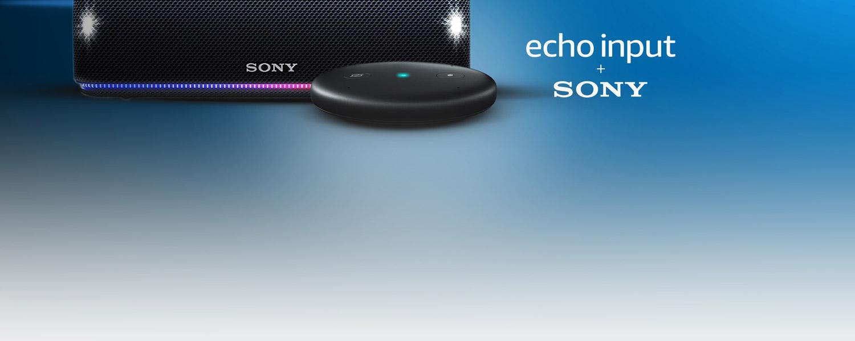 Echo Input + Sony SRS-XB31