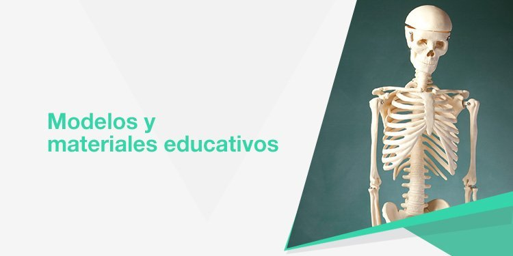 Modelos y materiales educativos