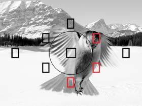 El sistema de 9 puntos AF, sensor de doble capa de 63 zonas y las ráfagas a 3.7fps te proporcionarán siempre la imagen perfecta