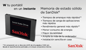 SanDisk SDSSDP-256G-G25 Disco Duro sólido Interno de 256 GB Negro ...