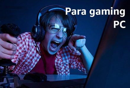 Para gaming