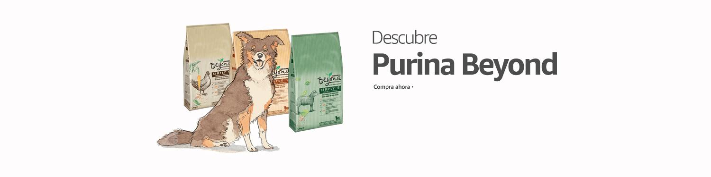 Descubre Purina Beyond.