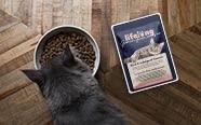 Comida de gato