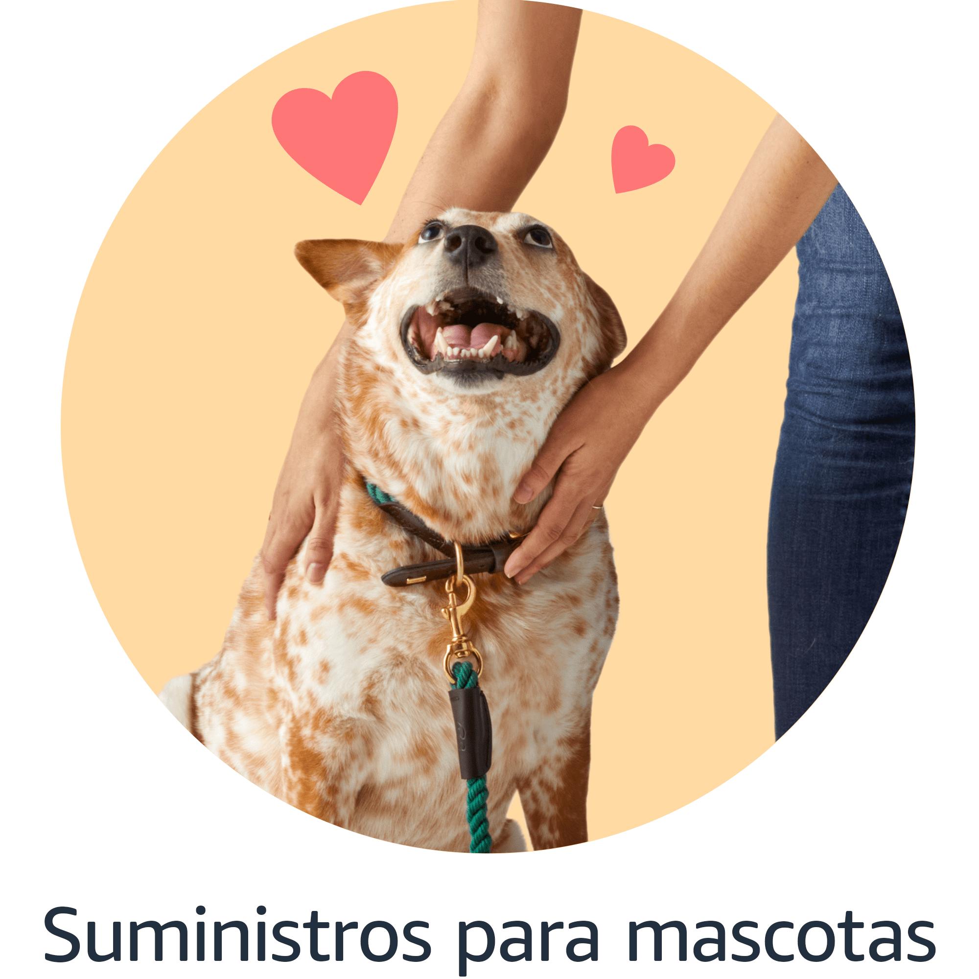 Suministros para Mascotas