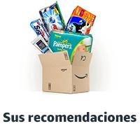 Sus recomendaciones