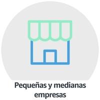 Pequeñas y medianas Empresas