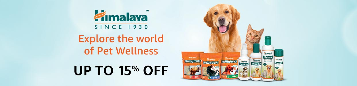 Pet Supplies Buy Dog Supplies Online At Best Prices In India - Every day this dog goes shopping all by himself to get treats