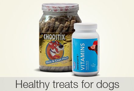 Healthy treats for dogs