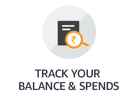 Track your balance & spends