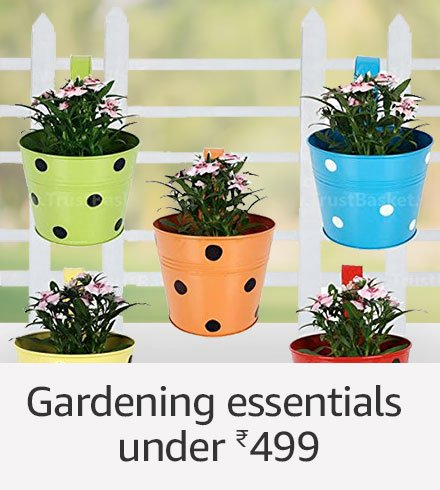 Gardeing essentials under Rs.499
