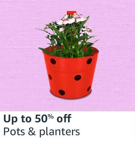 Pots & planter