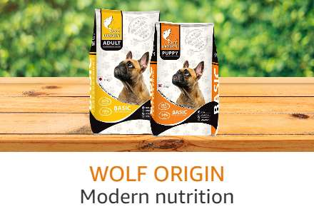 Wolf Origin