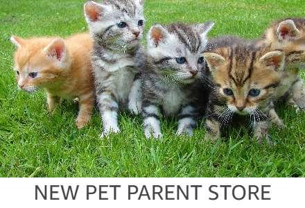 Premium Pet