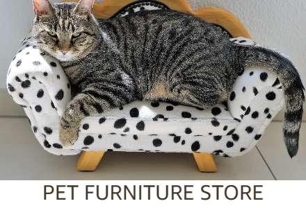 Pet Furniture Store
