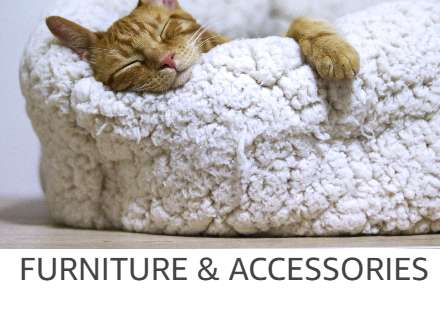 Pet Furniture Store