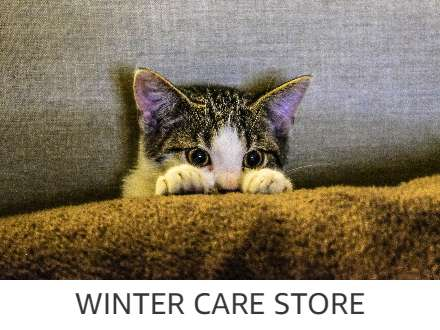 Winter Care Store