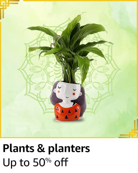 Plants and planters