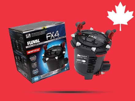 More products from Canada