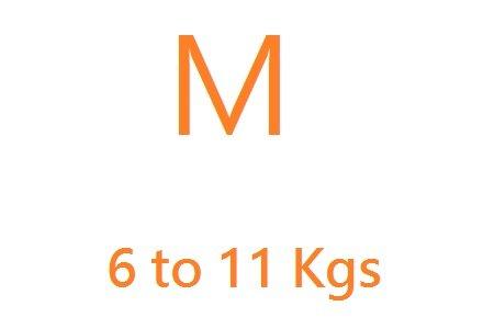 Medium (6-11kgs)