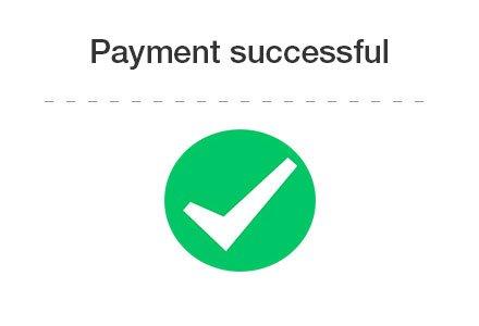 pay success
