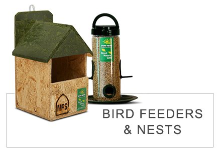 Bird Feeders and Nests