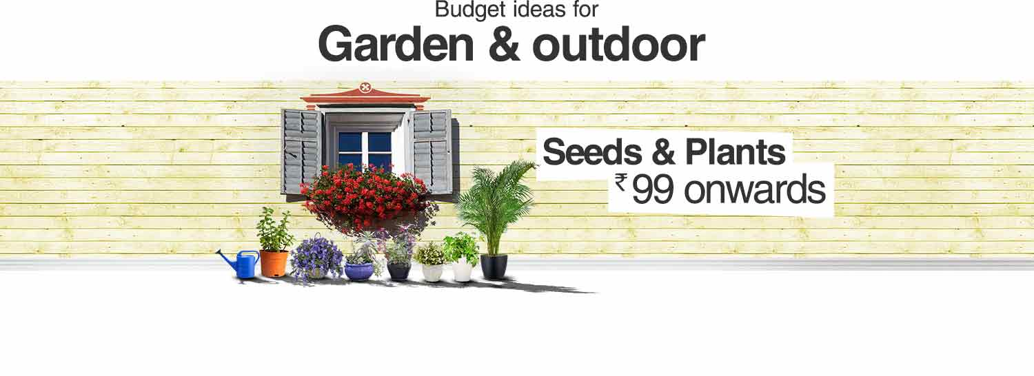Seeds and Plants Rs 99 onwards