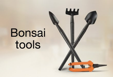 Gardening tools buy gardening tools online at best prices for Garden hand tools names