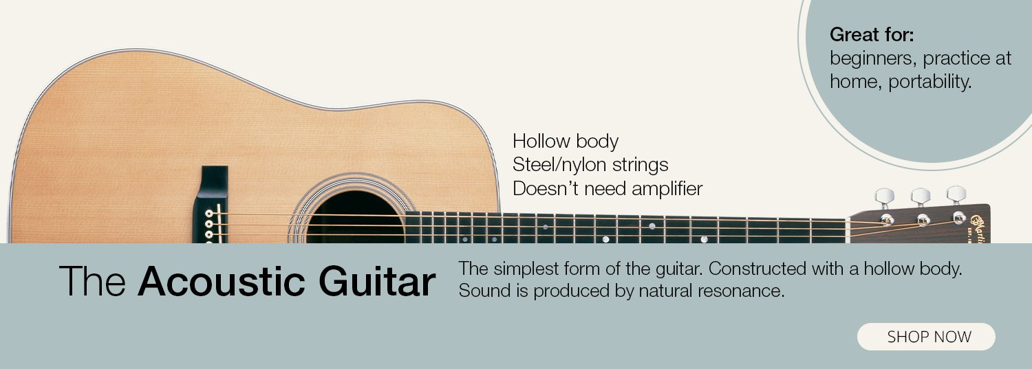 Guitar Buying Guide Do You Want To Buy A Guitar That Matches Your