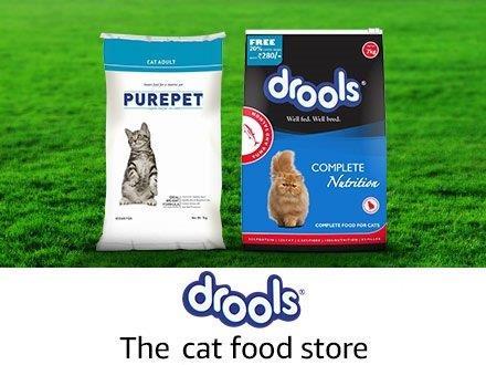 Drools cat store