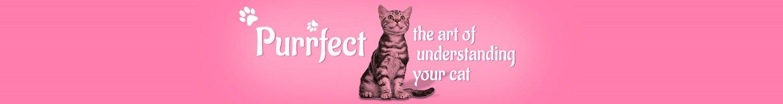 The art of understanding your cats